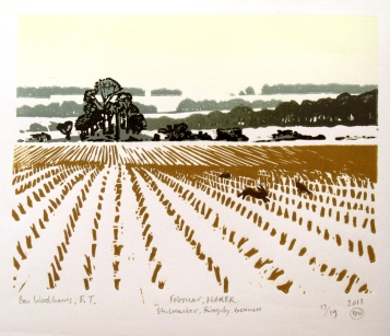February, Hares in Stubble field, Bornholm