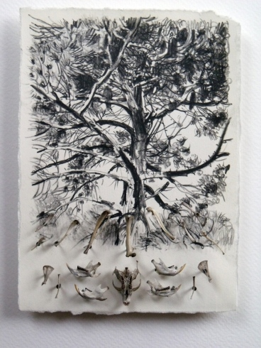 Owl Tree, Rønne (sold)