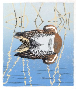 Duck print - Garganey