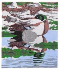 Duck print - Mallard