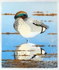 Duck print - Teal