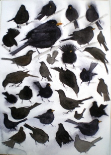 Thirty Two Blackbirds, Vestermarie (sold)