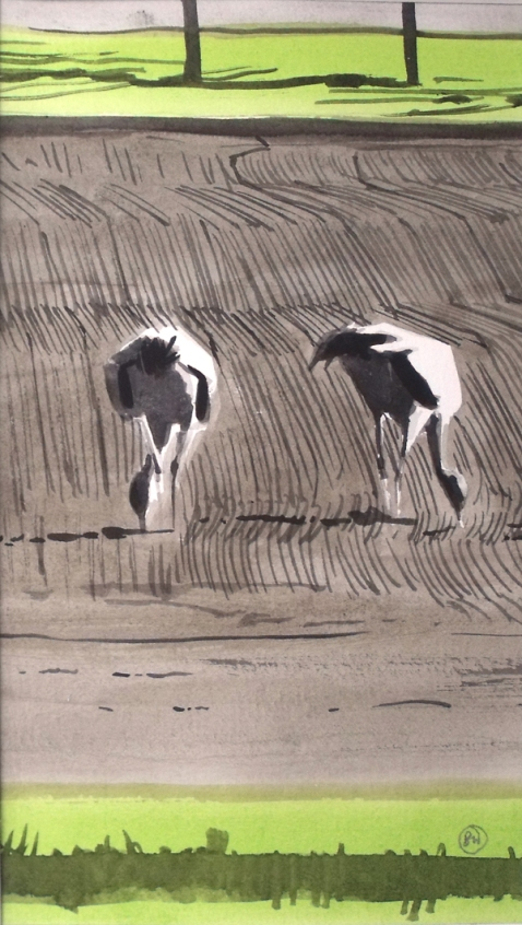 Cranes on Stripy Field, Udkæret