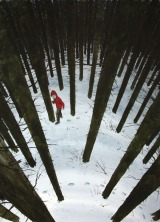 Red Hood in the Forest