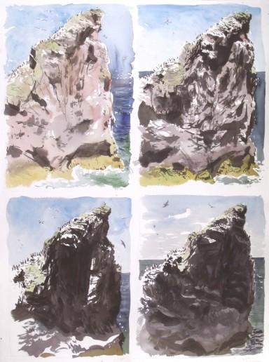 Four Views of St Abbs Head, Through the Day