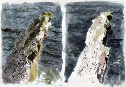 Two views from St Abbs Head, Through the Day