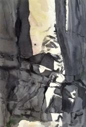 Study, Male Peregrine, Vang