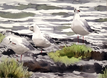 Trio of cold BHGs, Salthammer (sold)