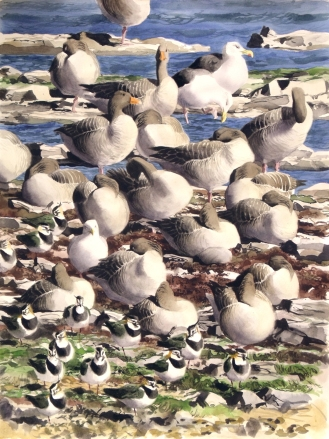 Gabby's Geese (sold)