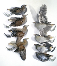 Studies of a Dead Spotted Crake (sold)