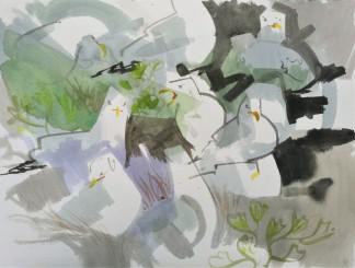 Angry Herring Gulls, Fidra, Scotland (sold)