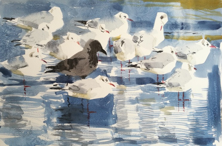 Freezing gulls and Hoodie, Rønne (sold)