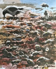Feeding in the Seaweed (sold)