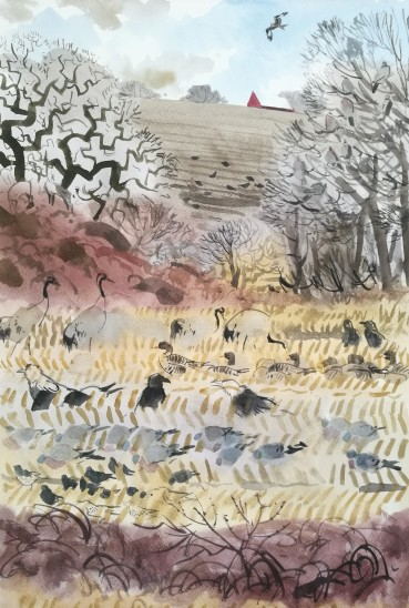 Diverse birds, feeding frenzy. February 2020, Myreby, Bornholm (sold)