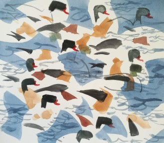 Shelduck group, Salthammer