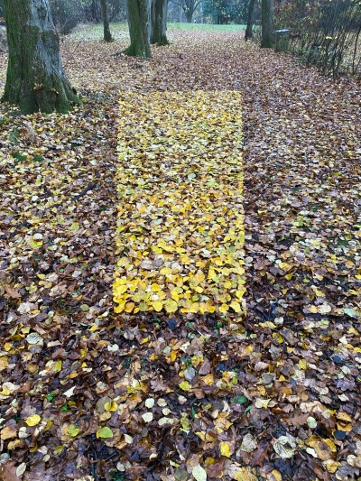Yellow Leaf rectangle in Brown Leaves