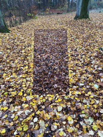 Brown Leaf Rectangle in Yellow Leaves